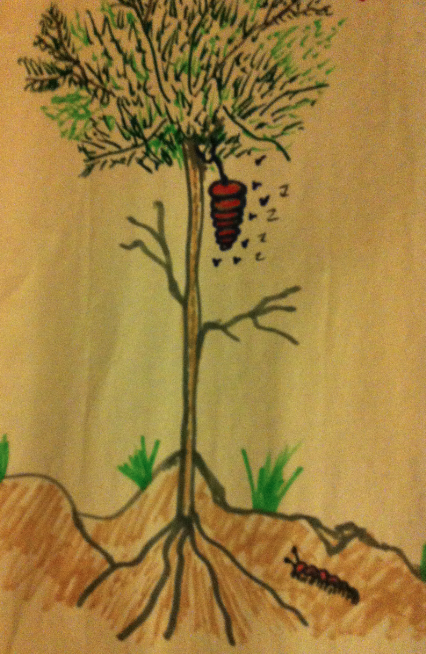 tree with hive J